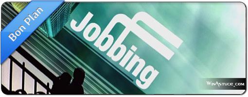 Arrondir ses fins de mois avec le Jobbing